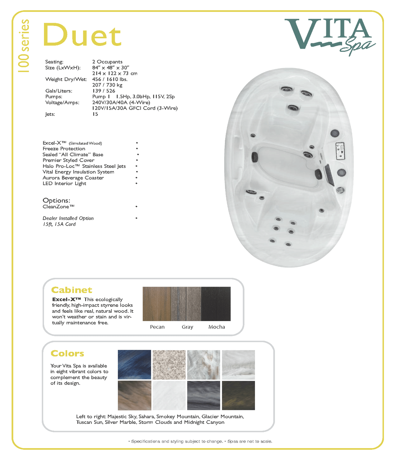Vita Spas Duet Hot Tub